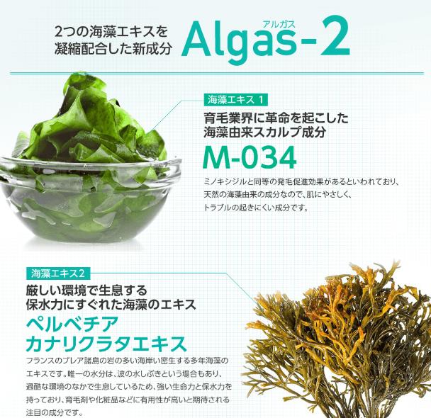 アルガス2