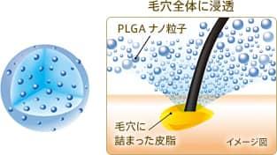 PLGAナノ粒子の働き
