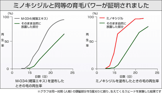 BUBKA実験結果グラフ