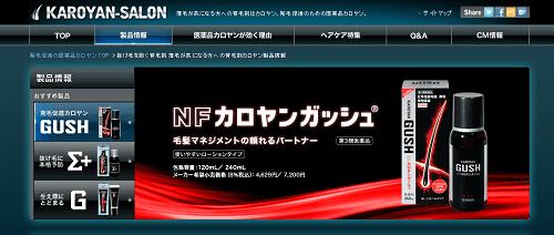 NFカロヤンガッシュの商品画像